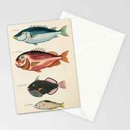 Vintage Color Sea Life Illustration by Louis Renard #6 Stationery Cards
