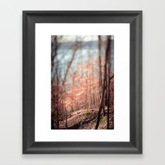 Old Flame Framed Art Print