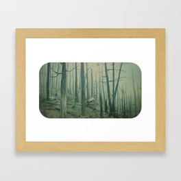 With Canvas Above, We Fall From The Sky Framed Art Print