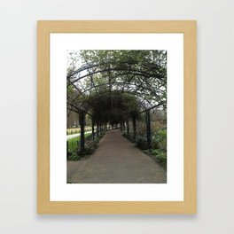 Through the Trellis Framed Art Print