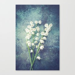 Lily Of The Valley II Canvas Print