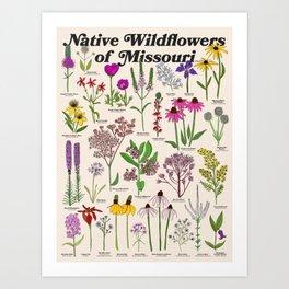 Missouri Wildflowers Art Print