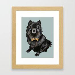 Ozzy the Pomeranian Mix Framed Art Print