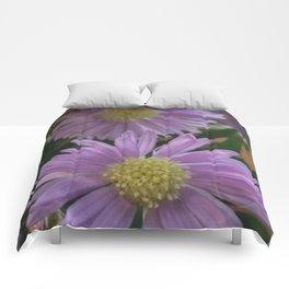 Purple Daisy Comforters