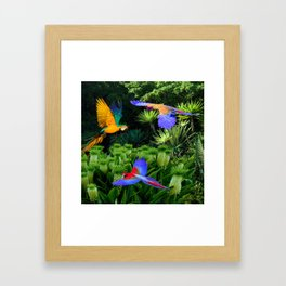 Jungle Paradise Framed Art Print