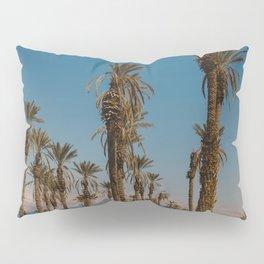 Palm trees in the Negev Desert, Israel Pillow Sham