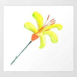 flor de cítrico Art Print