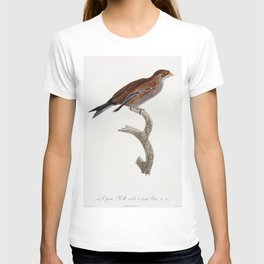 Coaita or Spider Monkey from Zoological lectures delivered at the Royal institution in the years 180 T-shirt