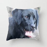 labrador Throw Pillows featuring Black Labrador by MehrFarbeimLeben