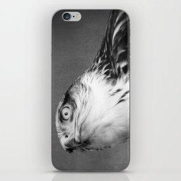 Red-tailed Hawk I B&W iPhone Skin