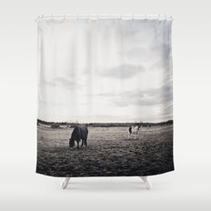 Horses in a Field in Black and White Shower Curtain