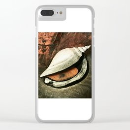 Painted Sea Shell Clear iPhone Case