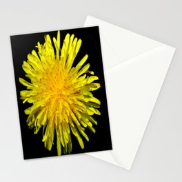 A Dandy Dandelion Stationery Cards