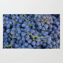 Concord Grapes Rug