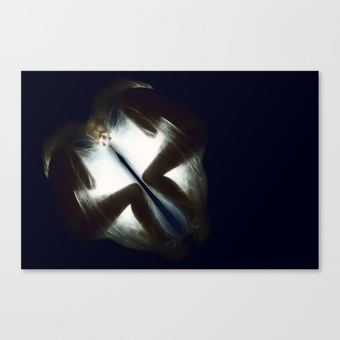 Suspended in Sleep  VACANCY Zine Canvas Print