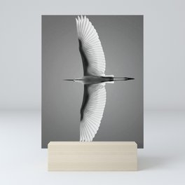 Wings of an Egret in Mid-flight black and white photography - black and white photographs Mini Art Print
