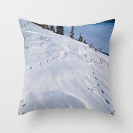 Wonder Lake, Denali National Park Throw Pillow