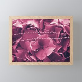 A Sea of Purple Pink Hydrangea Blossoms #1 #floral #art #society6 Framed Mini Art Print