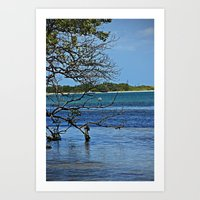 St. Pete Waters Art Print