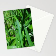 Water droplets Stationery Cards