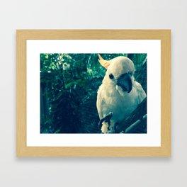 KAKADU Framed Art Print