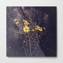 Yellow Desert Flowers Metal Print