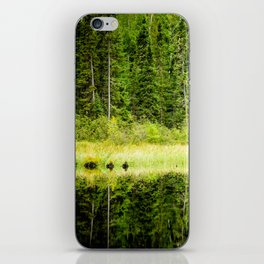 Green Reflections iPhone Skin