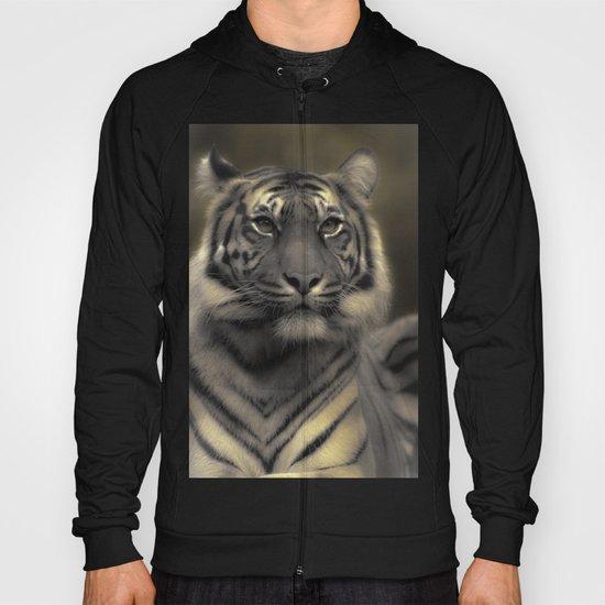 Golden Tiger 4 Hoody