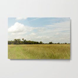 Texas Field under Blue Skies Metal Print