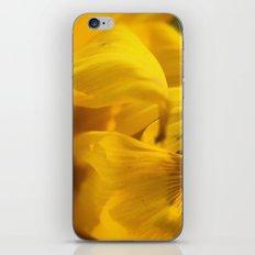 Sunflower Macro 2 iPhone Skin