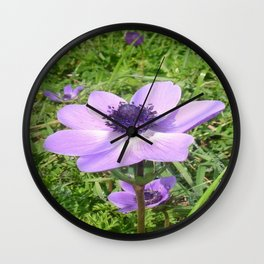 One Delicate Pale Lilac Anemone Coronaria Wild Flower Wall Clock