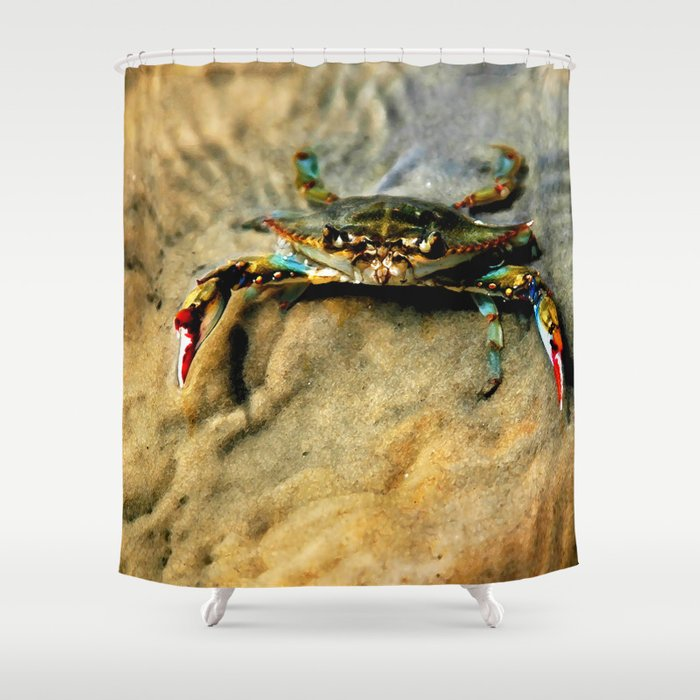 Blue Crab Shower Curtain By Jmccool