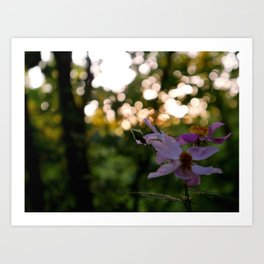Purpe Wild Flowers Art Print