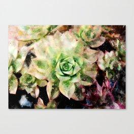 Colorful Succulent Watercolor Canvas Print
