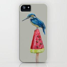 Kingfisher on ice 4 iPhone Case