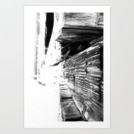 Cabin Texture Art Print