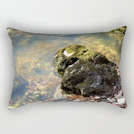 Alone in Secret Hollow with the Caves, Cascades, and Critters, No. 9 of 20 Rectangular Pillow