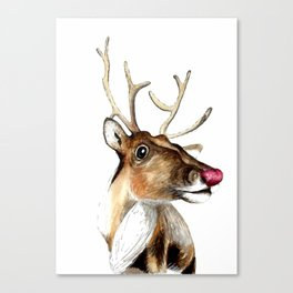 Rudolf the red nosed Reindeer Canvas Print
