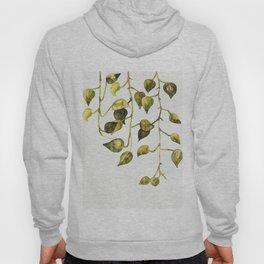Golden Pothos - Botanical ink painting Hoody