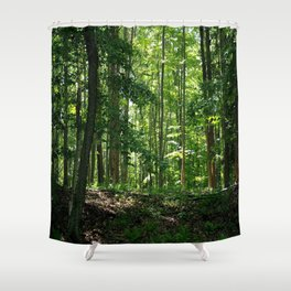 Pine tree woods Shower Curtain