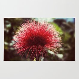 Red Puff Rug