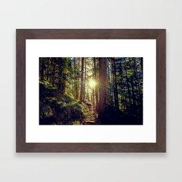 Hidden trail Framed Art Print