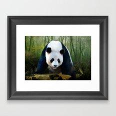 The Giant Panda Framed Art Print