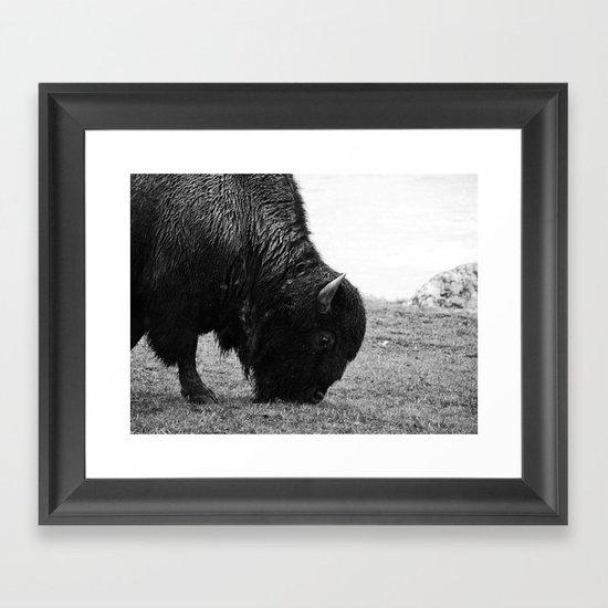 Tatanka Framed Art Print