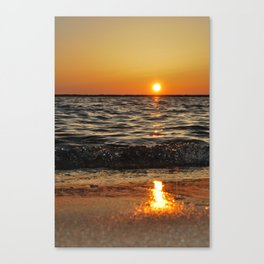 gold and tar Canvas Print