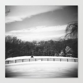 Snowy Virginia Farm with Horse in Black and White Canvas Print