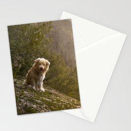 Greek Dog Stationery Cards