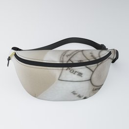 Form Fanny Pack
