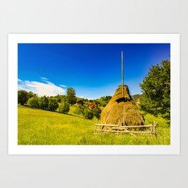 Haystack in the Carpathians of Romania Art Print