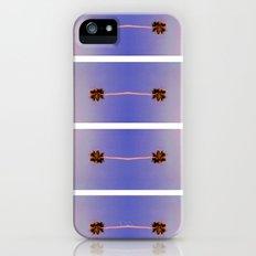 palm trees iPhone (5, 5s) Slim Case